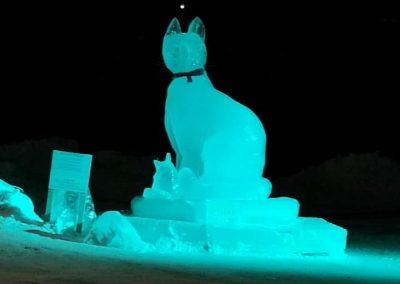Photo de soir- sculpture sur glace chat- Festival St-Côme en Glace 2020
